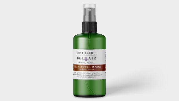 Eucalyptus radié – Hydrolat