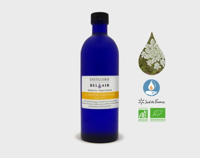 Hydrolat de Carotte Sauvage bio 200 ml