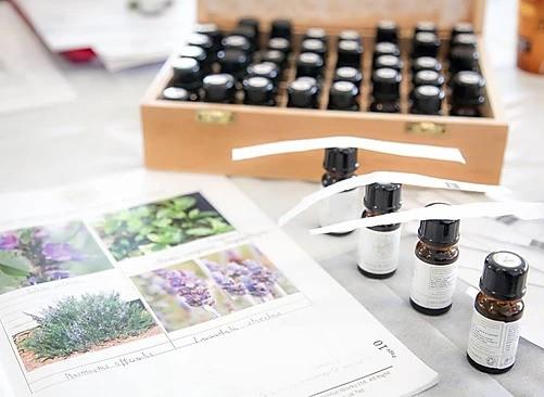 Une formation en aromathérapie à la distillerie !
