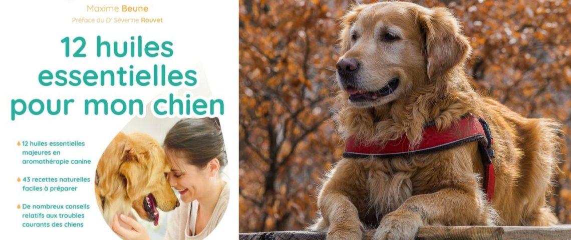 Un nouveau livre : 12 huiles essentielles pour mon chien
