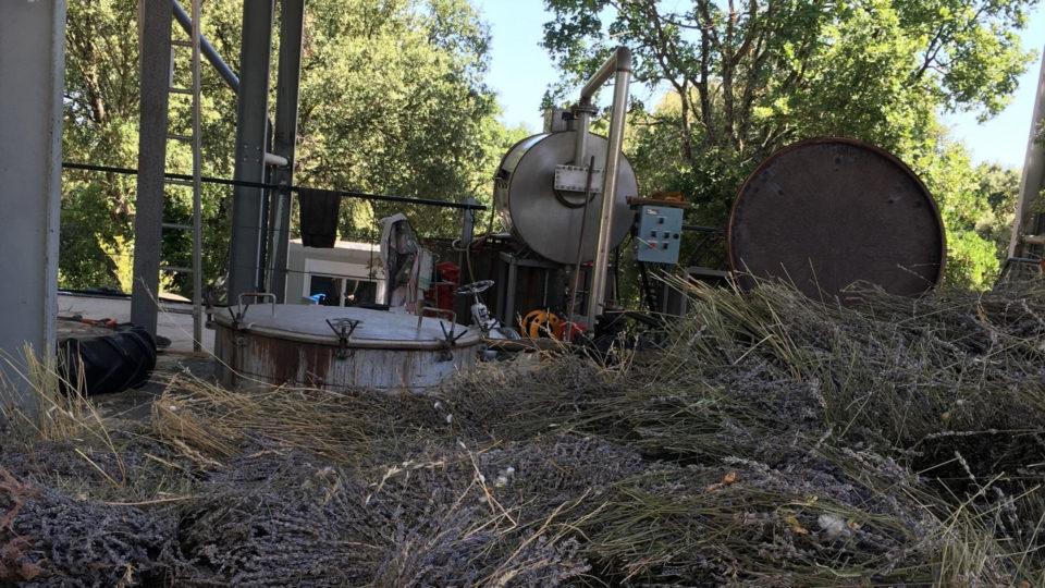 Visiter la Distillerie Bel Air!